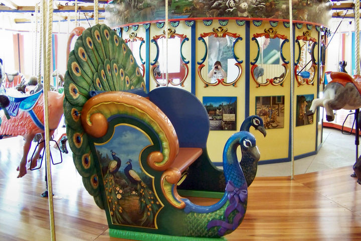 National Carousel Association - Binder Park Zoo Carousel ...
