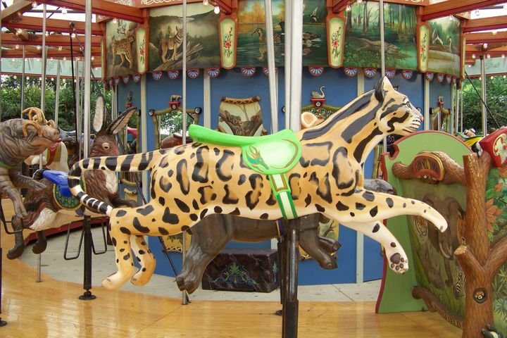 Birmingham Zoo Pictures Birmingham Zoo Carousel